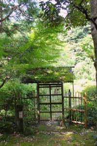 small wooden gate
